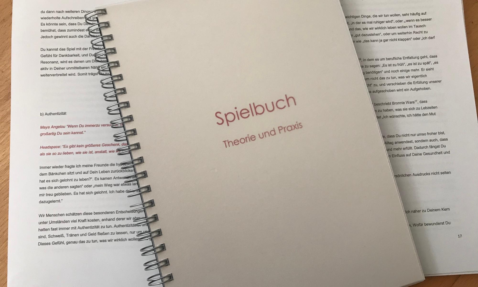 """""""Spielbuch - Theorie und Praxis"""""""